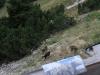 2012-09-28-29-bergsteigen-grosser-buchstein-078