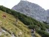 2012-09-28-29-bergsteigen-grosser-buchstein-086