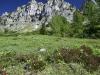 2012-06-13-wandern-grabnerstein-040